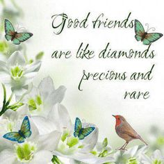 Good friends are like diamonds, precious and rare  #PictureQuotes, #Friendship #Friends #Diamonds   If you like it ♥Share it♥  with your friends.  View more #quotes @ http://quotes-lover.com/