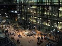 Paul Chemetov, Grande Galerie de l'Evolution, Museum d'Histoire naturelle, Paris, 1987-94