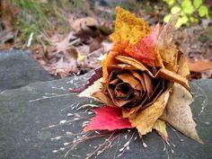 Maak met mooie herfst bladeren een bloem of een roos als decoratie in huis. Voeg tot slot een paar leuke, kleine takjes toe.