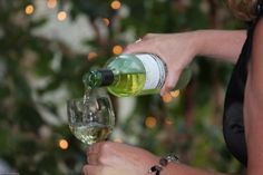 Find Wine & Food Events in your city. A collective listing of food, wine, beer and spirits tastings and events. East Hartford, Food Events, Northern Virginia, Hospice, Wine Tasting, Wine Recipes, White Wine, Festivals, Alcoholic Drinks
