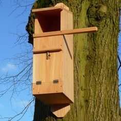 Tawny owls are content to nest in smaller cavities than barn owls and the design of this nest box reflects this.   Care must be taken when siting this nest box as tawny owls can be aggressive when they or their young are approached. Its best to leave them well alone while theyre nesting.