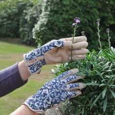 The gloves feature a stylish creamy fleur-de-lis pattern creating a striking contrast against a royal blue background. The tan palm and fingertips give the glove a classic look. Ethel Jubilee Gloves - Garden Supplies at Harrod Horticultural http://www.harrodhorticultural.com/ethel-jubilee-garden-gloves-pid9196.html