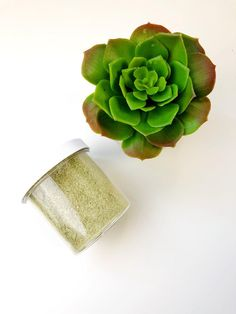 Moringa Powder, Charcoal Mask, Natural Glow, Face Oil, Rose Water, Clear Skin, Cruelty Free, Planter Pots, Skin Care