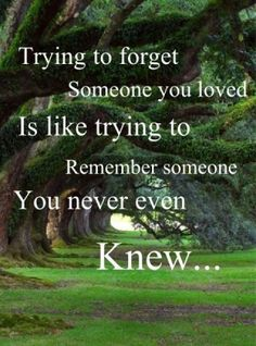 trying to forget someone you loved is like trying to remember someone you never even knew...