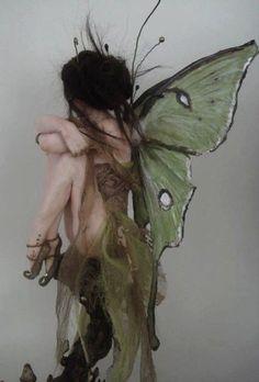 Fae Aesthetic, Arte Sketchbook, Mystique, Forest Fairy, Art Abstrait, Fairy Art, Photo Dump, Faeries, Picture Wall