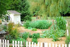 Rethinking Mulch Gardening