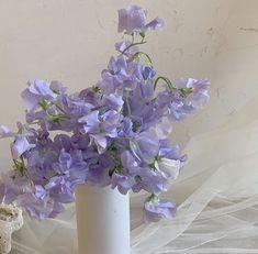 Violet Aesthetic, Lavender Aesthetic, Aesthetic Colors, Flower Aesthetic, Color Lila, Purple Themes, Pastel Purple, Periwinkle, Light Purple
