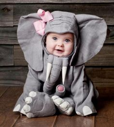 OH MY GOODNESS a baby in a elephant costume