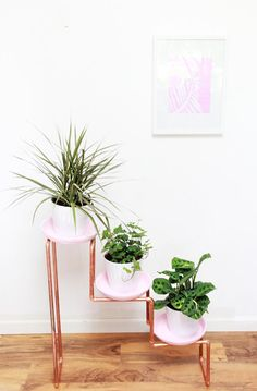 Give a trio of plants the tiered treatment with this #DIY copper pipe stand.