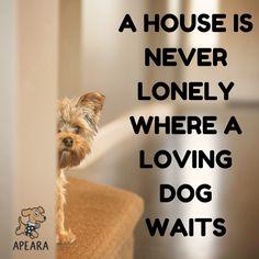So true.....sooooo true!!