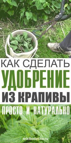 Garden Paths, Garden Art, Garden Landscaping, Home And Garden, Harvest Day, Vegetable Garden Design, Small Farm, Farm Gardens, Plant Care