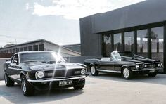 Mustangs in Black 1967 GT Convertible and 1970 Mach 1 Ford Mustangs at Jessica and John's wedding.