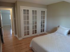 French Doors...Then treat the transparent glass to make translucent and hide closet clutter!