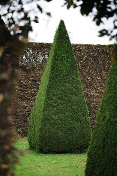 It's Not Easy Being Green: The Most Elaborate Hedges And Topiaries  - Veranda.com