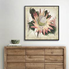 PROTEA CESARSKA MIXGALLERY vintage,flowers,wallart,canvas,canvas print,home decor, wall,framed prints,framed canvas,artwork,art
