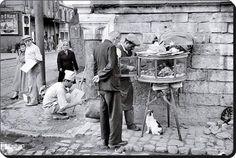 Şehzadebaşı, 1957; Rene Burri Turkish People, Ancient Mesopotamia, Old Photography, Hagia Sophia, Shopping Street, Ottoman Empire, Historical Pictures, Istanbul Turkey, Photojournalism