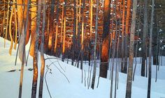 Winter Sunset, 2013. Peter Rotter