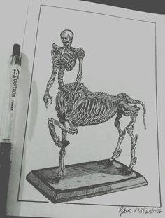 CENTAUR  ink - paper  Ryan Kristianto