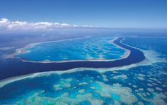 Australia - the Great Barrier Reef. I have wanted to see this since I watched a TV special as a kid. Oh The Places You'll Go, Places To Travel, Places To Visit, Tasmania, Dream Vacations, Vacation Spots, Visit Australia, Australia Travel, Australia Destinations
