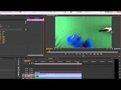 Premiere Pro Green Screen Tutorial