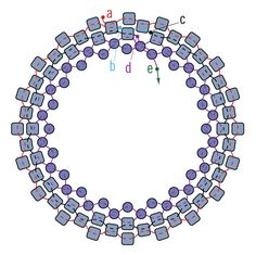 If you want to capture round or shaped stones in beaded bezels, look no further. These instructions will show you how to make perfect peyote stitch bezels every time.
