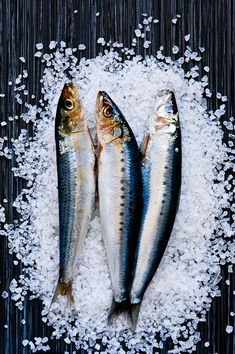 Viviane Perenyi an Australia based photographer focused on food and still life photography. Raw Food Recipes, Fish Recipes, Foto Picture, Dark Food Photography, Still Life Photos, Fish Art, Fish And Seafood, Food Design, Food Styling