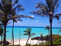 "This is what ""winter"" looks like 