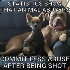 Yes. More should be shot. Wish we could have an open season for shooting animal abusers.