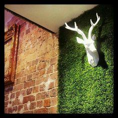 Turf wall green space