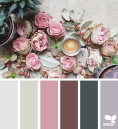 { color collage } image via: @clangart