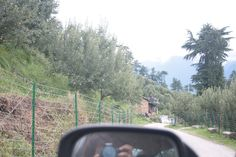Driving through the Apple Orchards!