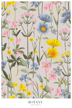 Vector Pattern, Pattern Design, Meadow Flowers, Pattern Illustration, Beautiful Patterns, Botany, Textile Design, Surface Design, Print Patterns