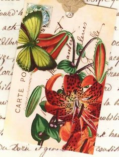 Gift Tags Tigerlily and Butterfly by Bluebird Lane by Bluebirdlane, $6.25