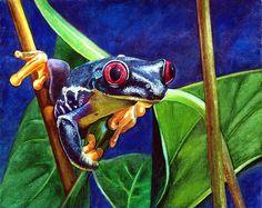 Rainforest Frog Painting by Olga Tereshchuk - Rainforest Frog Fine Art Prints and Posters for Sale