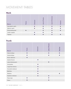 Anatomy for Arm Balances and Inversions - Yoga Mat Companion 4