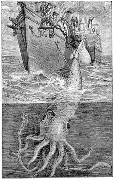 an 1883 giant squid illustrated Giant Squid, Prehistoric Animals, Deep Sea, Color Theory, Scuba Diving, Nautical, Geek, Mood, Illustration