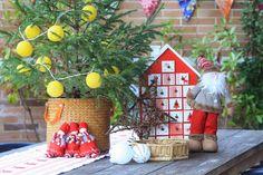 Decoración navideña en el jardín. www.decoandliving.com