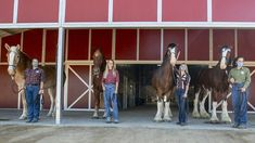 """There's no doubt that some of the most popular cast members at the Disneyland Resort are the four-legged ones who live and train at Circle D Ranch — and now, there are five new horses at the """"Happiest Place on Earth."""""""
