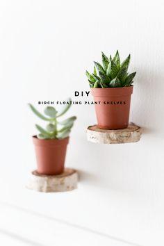 DIY Birch Slice Floating Plant Shelves Tutorial |