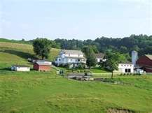 """Yoder's Amish Home and Farm - Holmes County, Ohio - We go here every Spring, right when all the """"babies"""" are being born. CLICK HERE for more on Yoder's at www.OACountry.com! #Amish #Ohio #Tourism"""