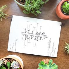 Bullet journal monthly log, hand lettering, plant doodles. | @menwhobullet