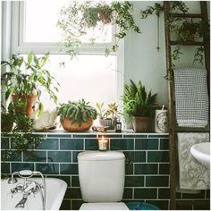 Bathroom Windows, Bathroom Plants, Boho Bathroom, Bathroom Trends, Chic Bathrooms, Master Bathrooms, Bathroom Inspo, Bathroom Designs, White Bathroom