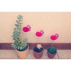 Sweet little garden:) Use funny cocktail sticks for your pots. Repost from @cami_gi / #flyingtiger #tigerstores #flyingtigercopenhagen #danishdesign #flamingo #plants