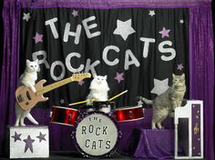 The Rock Cats!