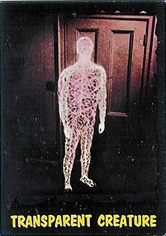 3 Transparent Creature