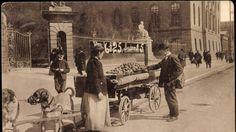 Zugpferde der Markthändler: Hundekarren mit Kartoffeln und Früchten, um 1911