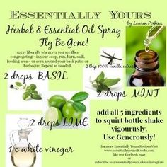 essential oils okay for horses - Bing Images