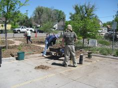 June 2018. The planting of the Cheyenne's Board of Utilities Habitat Hero demonstration garden. Blue Arrow Juniper, Importance Of Water, Red Lake, All About Plants, Audubon Society, Butterfly Bush, Drought Tolerant Plants, Evening Primrose, The Rev