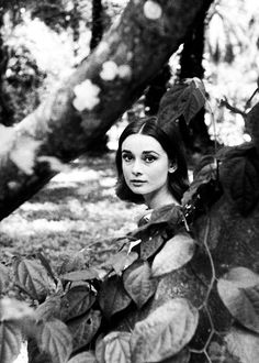 "Audrey Hepburn during the filming of ""The Nun's Story"", 1958. °"