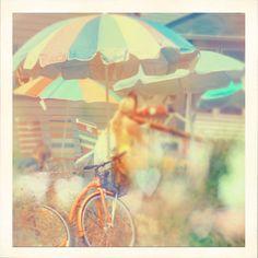 ///umbrellas